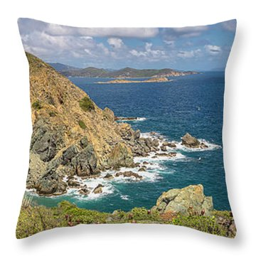 Throw Pillow featuring the photograph Ram Head Panoramic by Adam Romanowicz