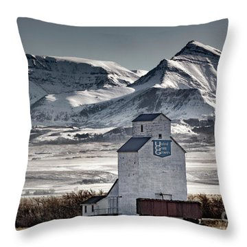 Throw Pillow featuring the photograph Ranchland Elevator by Brad Allen Fine Art