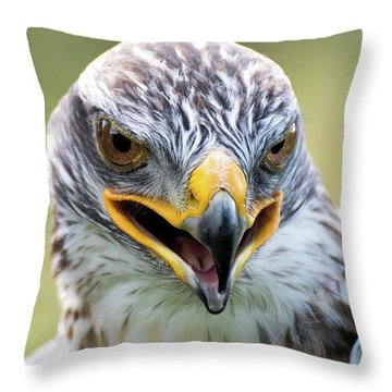 Raptor Power Throw Pillow