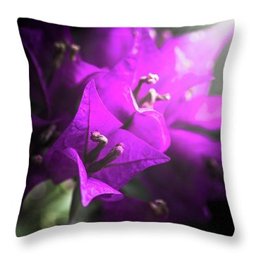 Rays Of Bougainvillea Throw Pillow