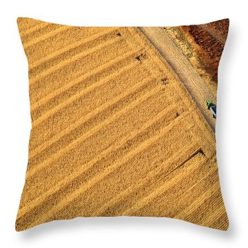 Throw Pillow featuring the photograph Ready For More by Carl Young