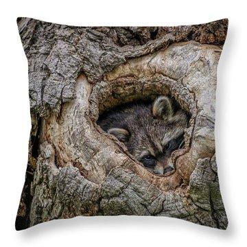 Ready For Nightfall Throw Pillow