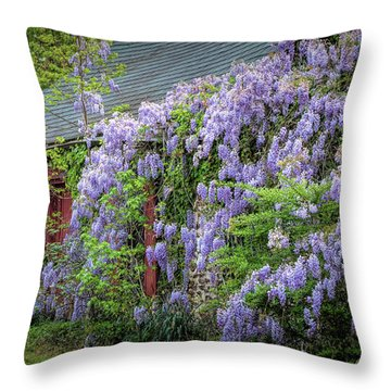 Reclaimed By Nature Throw Pillow