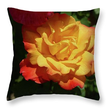 Red And Yellow Rio Samba Roses Throw Pillow