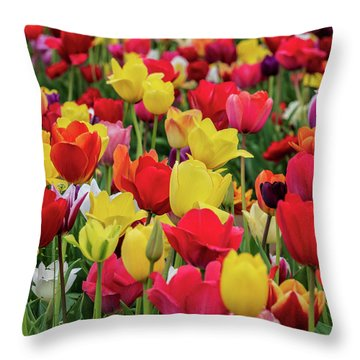 Throw Pillow featuring the photograph Red And Yellow Tulips by Louis Dallara