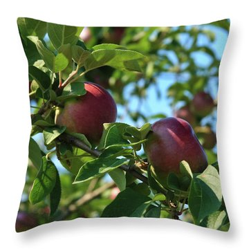 Throw Pillow featuring the photograph Red Apples In The Apple Tree by Tatiana Travelways