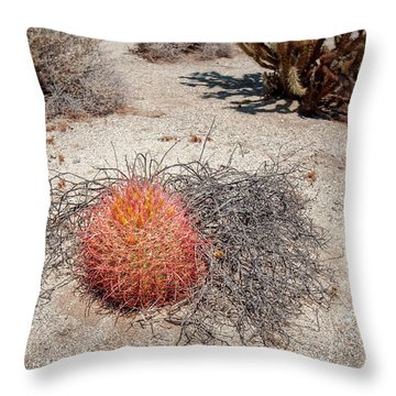 Red Barrel Cactus And Mesquite Throw Pillow