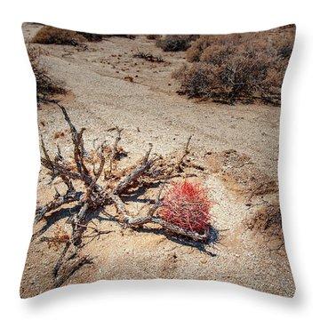 Red Barrel Cactus Throw Pillow