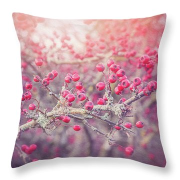 Red Berries Of Winter  Throw Pillow