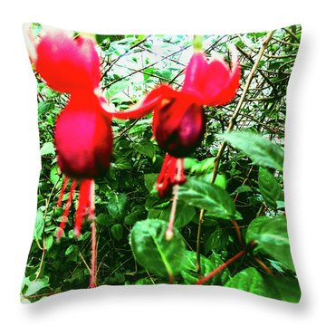 Red Candies Throw Pillow