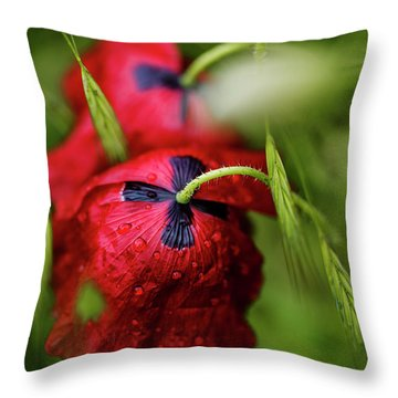 Red Corn Poppy Flowers With Dew Drops Throw Pillow