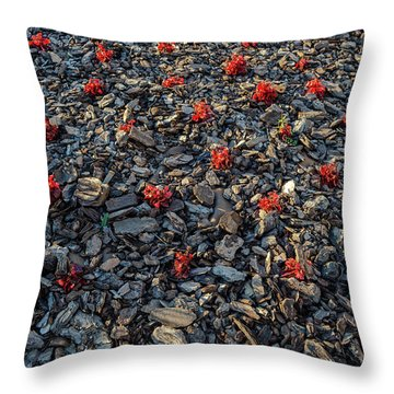 Red Flowers Over Stones Throw Pillow