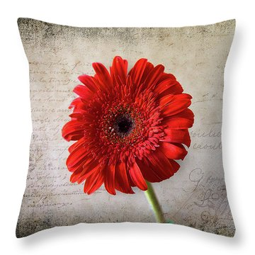 Throw Pillow featuring the photograph Red Gerbera by Milena Ilieva