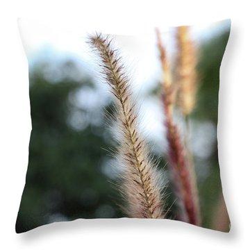 Red Grass - Pennisetum Setaceum 'rubrum' Throw Pillow
