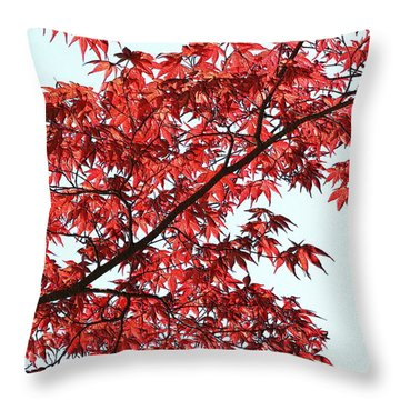 Throw Pillow featuring the photograph Red Japanese Maple Leaves by Debi Dalio