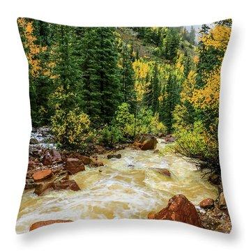 Red Mountain Creek In San Juan Mountains Throw Pillow