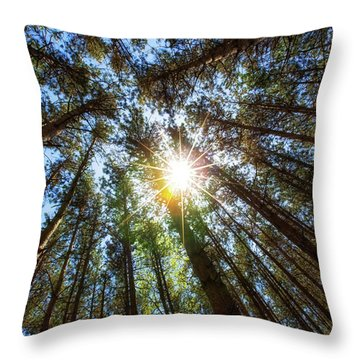 Red Pines 2 Throw Pillow
