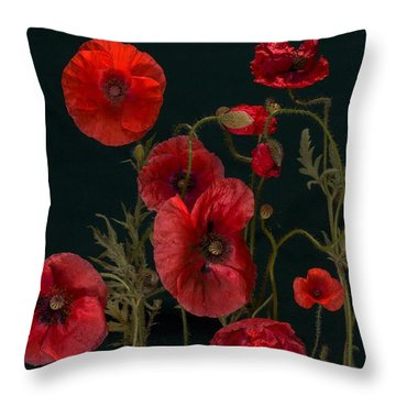 Red Poppies On Black Throw Pillow