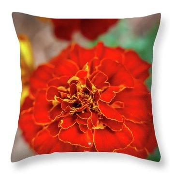 Red Summer Flowers Throw Pillow