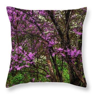 Redbud And Dogwood In The Rain Throw Pillow