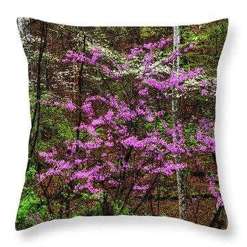 Redbud Dogwood And Sycamore Throw Pillow