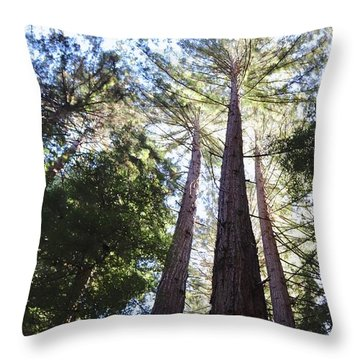 Redwoods, Blue Sky Throw Pillow