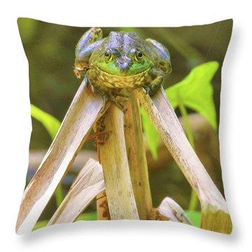 Reeds Bully Throw Pillow