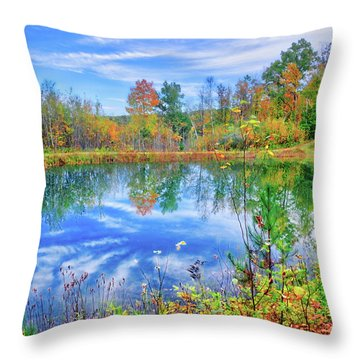 Throw Pillow featuring the photograph Reflecting On Fall At The Pond by Lynn Bauer