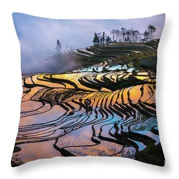 Reflecting Terraces Throw Pillow