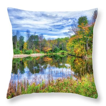 Throw Pillow featuring the photograph Reflections Of Fall In The Finger Lakes by Lynn Bauer