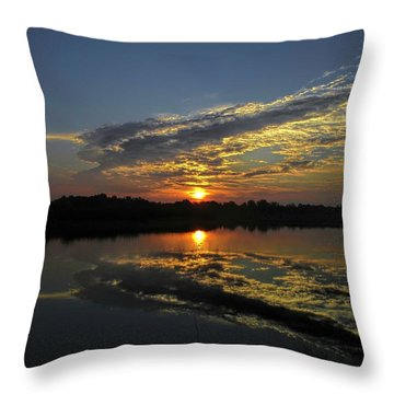 Reflections Of The Passing Day Throw Pillow