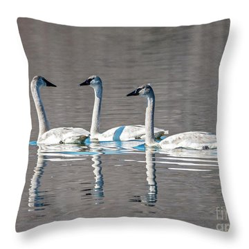 Reflections Of Three Throw Pillow