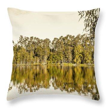 Reflective Rivers Throw Pillow
