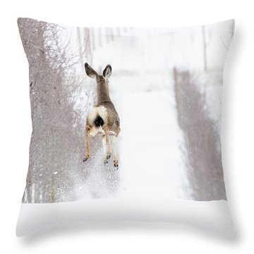 Reindeer In Training Throw Pillow