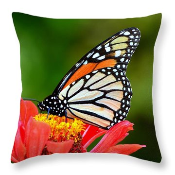 Remembrance Sweet Angel Boy  Throw Pillow