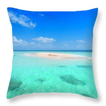 Tropical Beach Scene Throw Pillows Fine Art America