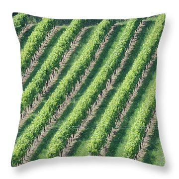 Riesling On The Rhine Throw Pillow