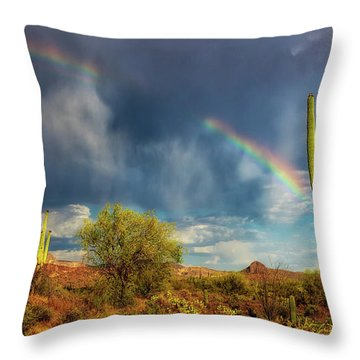 Respite From The Storm Throw Pillow