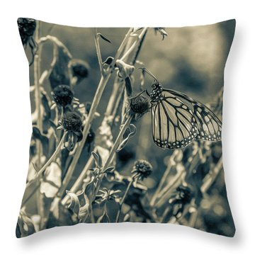 Resting Butterfly Bw Throw Pillow