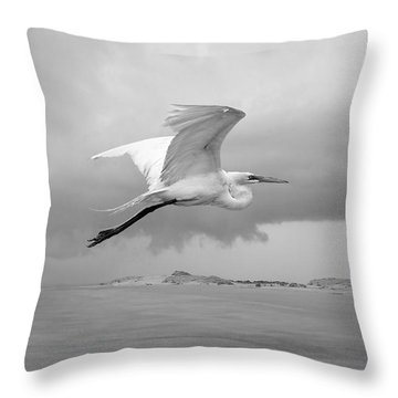 Retreat From Coming Storm Throw Pillow