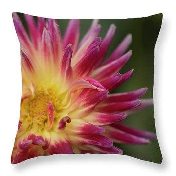 Revel Petal Throw Pillow