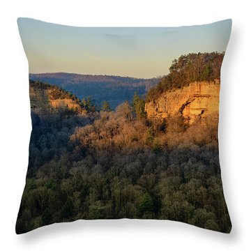 Revenuer's Rock Throw Pillow