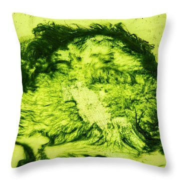 Rhapsody In Green Throw Pillow