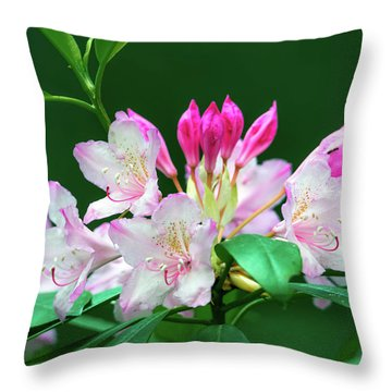 Rhododendron 2 Throw Pillow