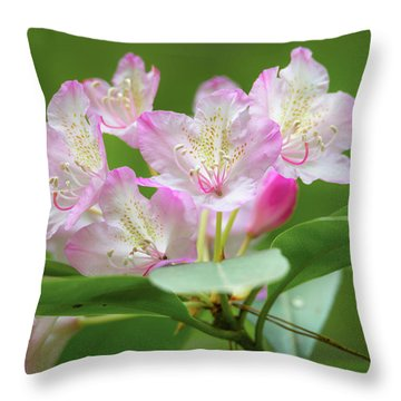 Rhododendron 3 Throw Pillow