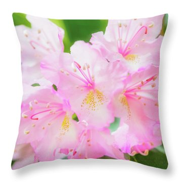 Rhododendron 4 Throw Pillow
