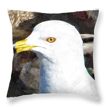 Ringbilled Gull Portrait Throw Pillow