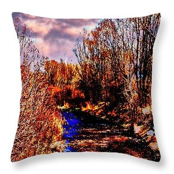 Rio Taos Bosque V Throw Pillow