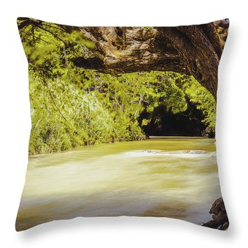 River Banks In Trelawny Jamaica Throw Pillow