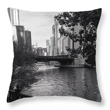 River Fence Throw Pillow